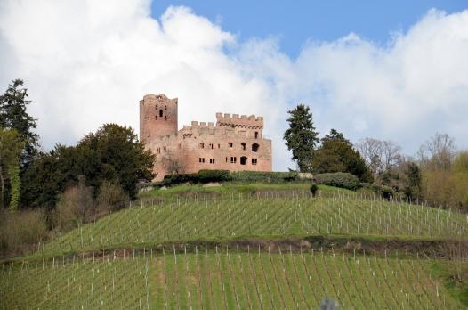 Kintzheim, château de la Volerie des Aigles